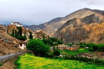 Srinagar and Ladakh Package