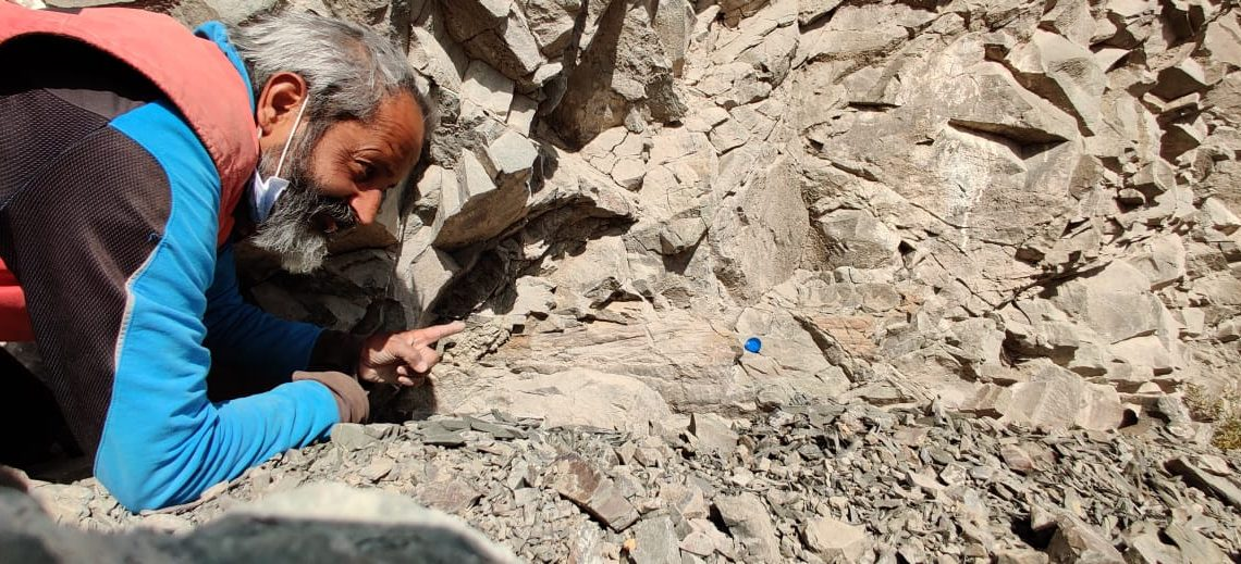 Ritesh Arya searching for fossils in Ladakh